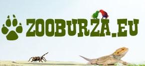 zooburza